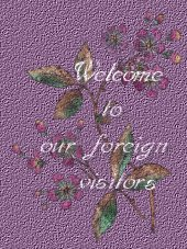 Welcome to our foreign visitor